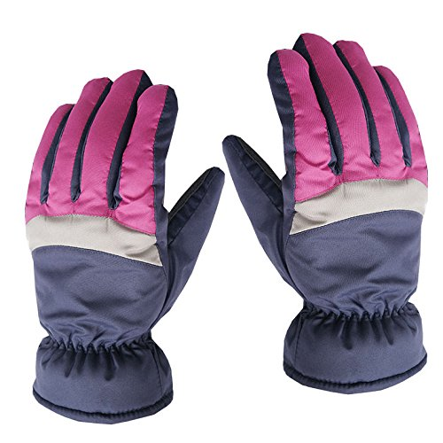 SaveStore Women Ski Gloves Windproof Waterproof Warm Cycling Ski Snow Winter Outdoor Snowmobile Motorcycle Snowboard Skiing Gloves ()