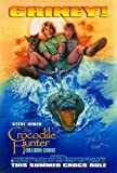 The Crocodile Hunter: Collision Course Poster Movie 11x17 Steve Irwin Terri Irwin Magda Szubanski