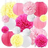Pink Paper Lanterns Decorative Tissue Paper Flower Pom poms Decorations for Wedding Party, 18ct