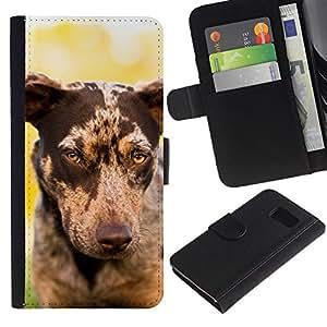 eJoy---La carpeta del tirón la caja de cuero de alta calidad de la PU Caso protector - Samsung Galaxy S6 - --Whippet Saluki Big Dog Piebald Spots