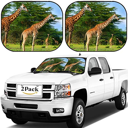 - MSD Car Windshield Sun Shade, Universal Fit, 2-Piece for Car Window SunShades, Automotive Foldable Protector Cover, Family of Wild Giraffes on The Lake Naivasha Africa Kenya Image ID 5327588
