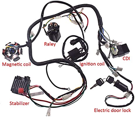 JRL Arnés de cableado Eléctrico para Estantería de Cables para GY6 ...