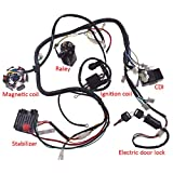 JRL 150CC GY6 Wiring Harness Wire Loom Stator CDI Switch Electrics Assembly for 4-Stroke Engine 150CC 125CC Go Kart ATV Scooter Buggy