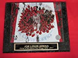 Red Wings Joe Louis Arena FINAL GAME Engraved Collector Plaque w/8x10 Photo