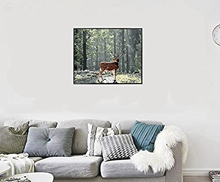 DIY Digital Canvas Oil Painting Gift for Adults Kids Paint by Number Kits Home Decorations Forest 16 20 inch