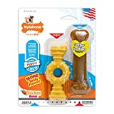 Nylabone Just For Puppies Petite Ring and Bone Puppy Dog Chew Toys, Combo Pack