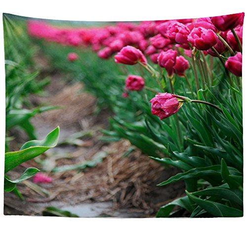 Planting Iris Care (Westlake Art - Tulip Plant - Wall Hanging Tapestry - Picture Photography Artwork Home Decor Living Room - 68x80 Inch (3C214))