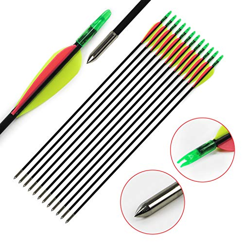 "GUGULUZA Archery 30"" Fiberglass Archery Target Arrows, Practise Recurvebow Compound Bow Shooting (Green-Pink)"
