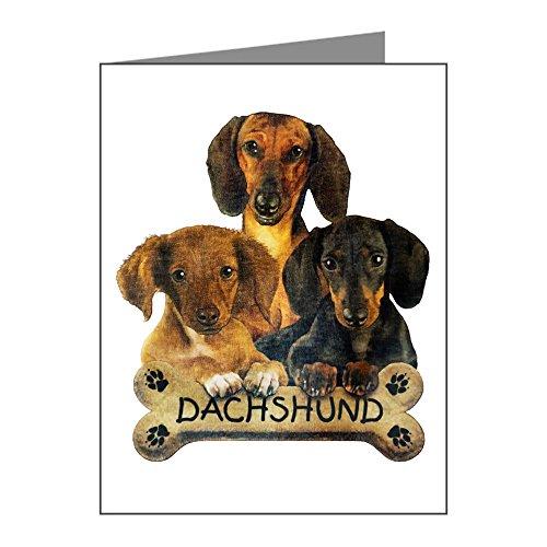 (X-Large Greeting Card (20 Pack) Dachshund Trio with Bone Name Plate)
