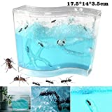 INSO Ant Farm Ant Work Ant Palace Ant Factory Ant Home Gel Maze