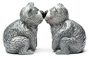 Magnetic Salt and Pepper Shaker - Koala Bears