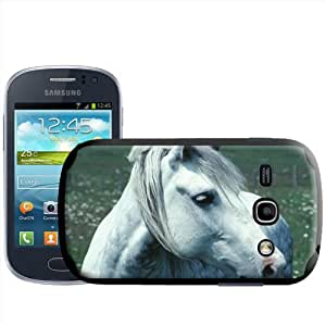 Fancy A Snuggle - Carcasa rígida para Samsung Galaxy Fame S6810, diseño de caballo