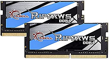 G.SKILL Ripjaws Series 16GB (2 x 8GB) Desktop Memory