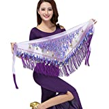ZLTdream Belly Dance Tassels Triangle Hip Scarf With Coins Sequins Purple