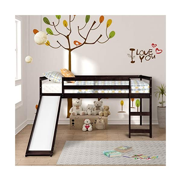 Twin Loft Bed with Slide for Kids/Toddlers, Wood Low Sturdy Loft Bed, No Box Spring Needed 1