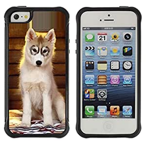 LASTONE PHONE CASE / Suave Silicona Caso Carcasa de Caucho Funda para Apple Iphone 5 / 5S / Husky Puppy Alaskan Malamute Dog