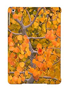 Awesome Case Cover/ipad Air Defender Case Cover(fall Trees)
