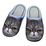 Indoor Cartoon Slippers for Women&Men, Cute Animal Winter Warm Soft Plush Cotton Slip-on Home Slippers Thermal Fleece Scuff Mules Non-slip Rubber Sole Shoes (US size: 7-8(EUR size: 38-39), Angry Cat)