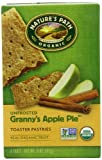 Nature's Path Organic Toaster Pastries, Unfrosted Granny's Apple Pie, 6 Count Box (Pack of 12)
