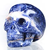 "Mineralbiz New Design 1.8"" - 2"" Natural Sodalite Gemstone Carved Crystal Skull, Skull Carving, Reiki Human Skull Head Sculpture, Healing"