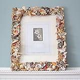 Beach Decor Seashell Wall Frame, Nautical Decor Shell Frame, Seashell Frame, Coastal Decor Wall Frame in 10x13''