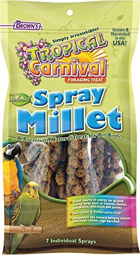 51poZ9DRcoL - F.M. Brown's Tropical Carnival Natural Spray Millet, Daily Natural Foraging Treat for Seed-Eating Birds, Sun-Cured and Preservative Free, 7-Pack