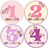 Baby Girl Monthly Milestone Stickers 1-12 Months Newborn Girl Butterfly bodysuit Stickers by Mumsy Goose