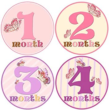 Baby Monthly Milestone Growth Stickers in Pink Purple Grey Owls MS327 Nursery Theme Baby Shower Gift Baby Photo Prop