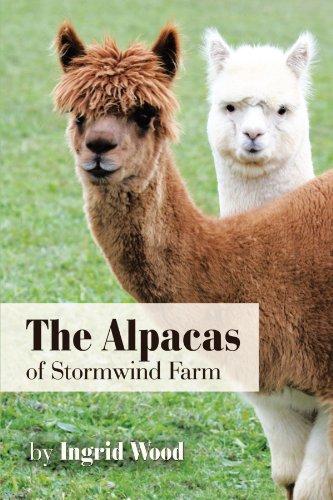 The Alpacas Of Stormwind Farm