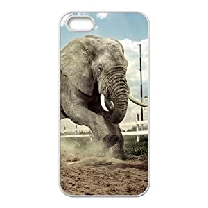 Durable Material Phone Case With Elephant Image On The Back For iPhone 5,5S
