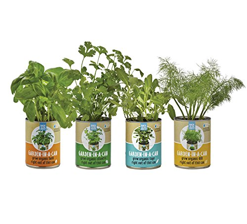 Back-to-the-Roots-Garden-in-a-Can-Grow-Organic-Herbs-Variety-Pack-BasilCilantroDillSage-4-Count