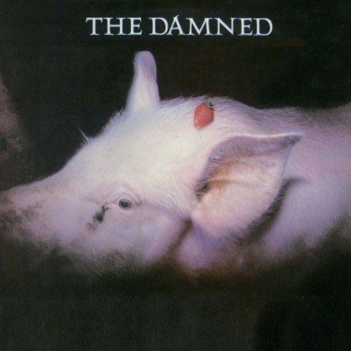 The Damned - Life Goes On Lyrics - Lyrics2You
