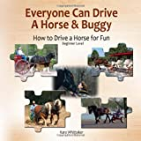 Everyone Can Drive a Horse and Buggy, Kara Whittaker, 1456336274