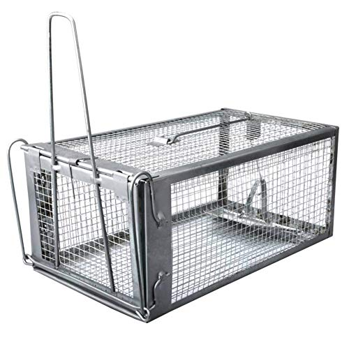 (Trap Top - Quality Chipmunk Trap, Chipmunks Rats & Mice Live Humane Cage Trap, No Kill One-Door Medium Animal Rodents Catcher, Just Catch and Release (Medium))