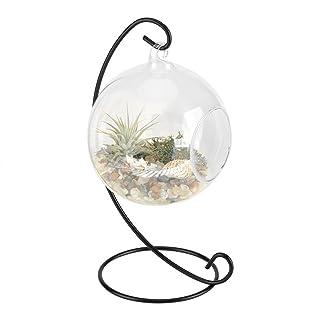 Jarrón de cristal artístico para colgar en forma de C de terrario con marco para un gran terrario y un centro de flores de bonsai Acogedor