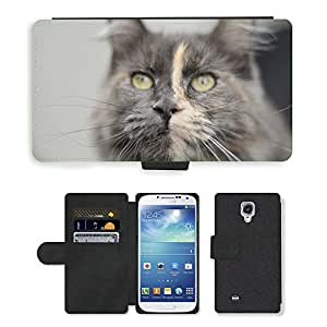 Hot Style Cell Phone Card Slot PU Leather Wallet Case // M00111044 Cat Animal Cat'S Eyes Domestic Cat // Samsung Galaxy S4 S IV SIV i9500