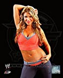 World Wrestling Entertainment - Rosa Mendes 2011 Posed Photo 11 x 14in