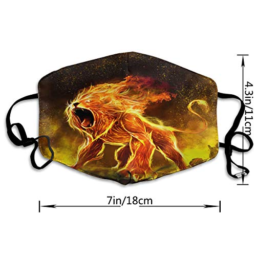 Howl Fire Lion Adult Various Protective Fashion Air Mask | Face Mask | Anti Pollution Dust Mask | Washable And Reusable