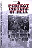 A Perfect Picture of Hell : Eyewitness Accounts by Civil War Prisoners from the 12th Iowa, , 087745759X