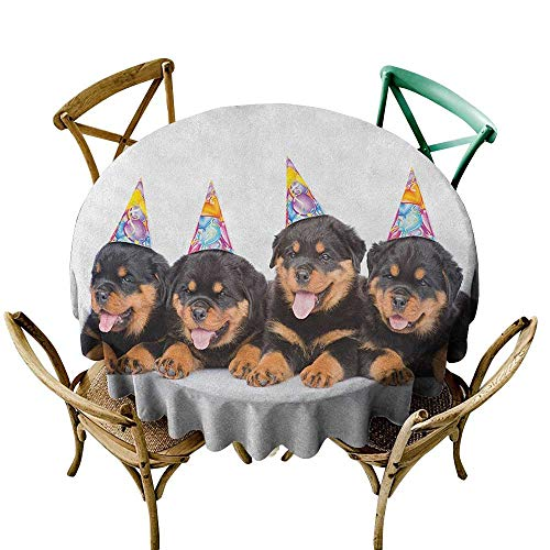 Wendell Joshua White Tablecloth 70 inch Kids Birthday,Rottweiler Puppies with Party Cone Hats Cute Puppies Dogs Art Print, Black and Marigold Polyester Fabric Table Cloth