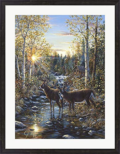 Whitetail Deer by Jeff Tift Framed Art Print Wall Picture, Espresso Brown Frame, 29 x 37 inches