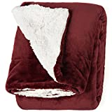Life Comfort Microfiber Plush Polyester 60'' x 70'' All Season Blanket for Bed or Couch, Red