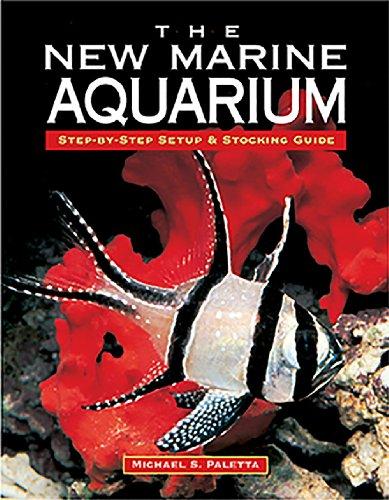 Halloween Money Saving Tips (The New Marine Aquarium)