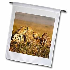 Danita Delimont - Cheetahs - Cheetah with cub in the Masai Mara GR, Kenya-AF21 JMC0164 - Joe and Mary Ann McDonald - 12 x 18 inch Garden Flag (fl_71057_1)
