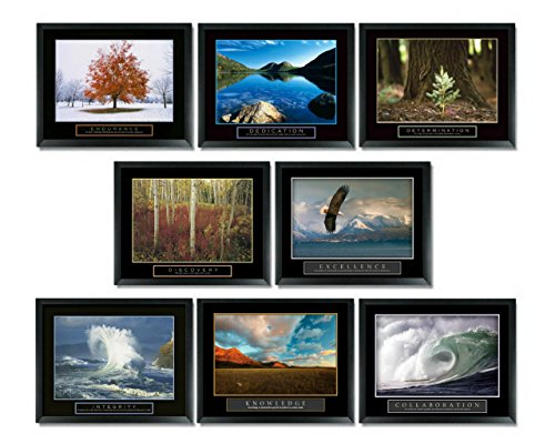 8 Framed Motivational Posters Inspirational Office Decor Collection