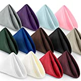 "Lann's Linens - 1 Dozen 20"" Oversized Cloth Dinner Table Napkins - Machine Washable Restaurant/Wedding/Hotel Quality Polyester Fabric (Multiple Colors)"