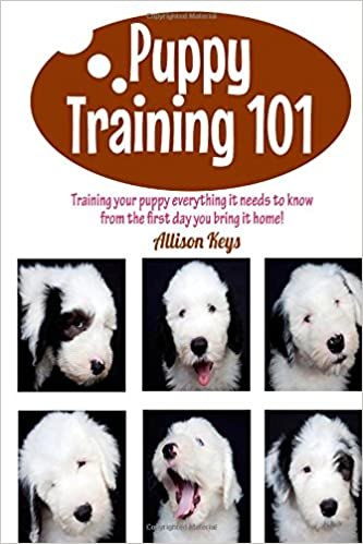 Puppy Training 101 Training your puppy everything it needs to know from the first day you bring it home