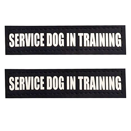 FAYOGOO Reflective in Training/Service Dog in Training/Therapy Dog/Do Not Pet/Emotional Support Dog Patches with Hook Backing for Service Dog Vests Harnesses (Service Dog in Training, S:4.5x 1)