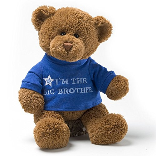GUND I'm the Big Sister T-Shirt Teddy Bear Stuffed Animal Plush