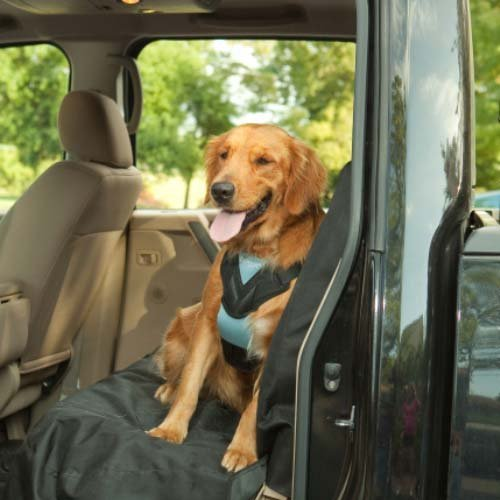 MED Auto Dog Harness by Bergan